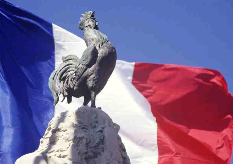 Галльский петух - символ Франции